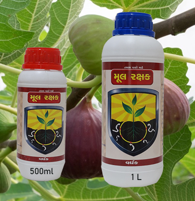 fig-crop-diseases-pesticides