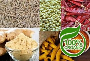 buy organic spices (masala)