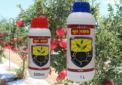pomegranate-tree-crop-diseases-pesticides