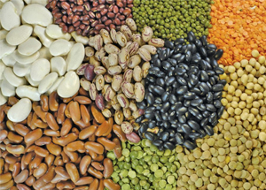 sell pulses online